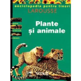 PLANTE - ANIMALE