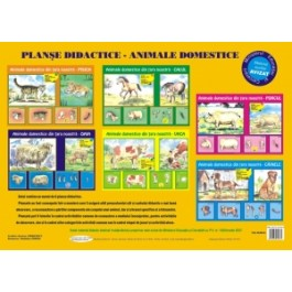 Planse didactice - Animale domestice