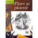 LECTIA DE DESEN. FLORI - PLANTE