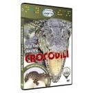 Afla totul despre crocodili.