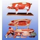 Mulaj porc-18 piese